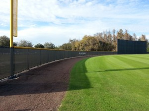 Yankees Windscreen - Tampa, FL