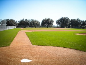 Pittsburgh Pirates Natural Grass Field