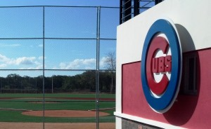 CHICAGO CUBS<br />D.R. Baseball Academy<br />   Synthetic Baseball Field