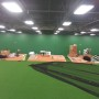 Phillies New Training Facility Batting Cage Turf