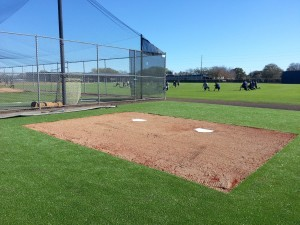 NEW YORK YANKEES<br/ > Catcher's Area Turf<br/ > Tampa, FL