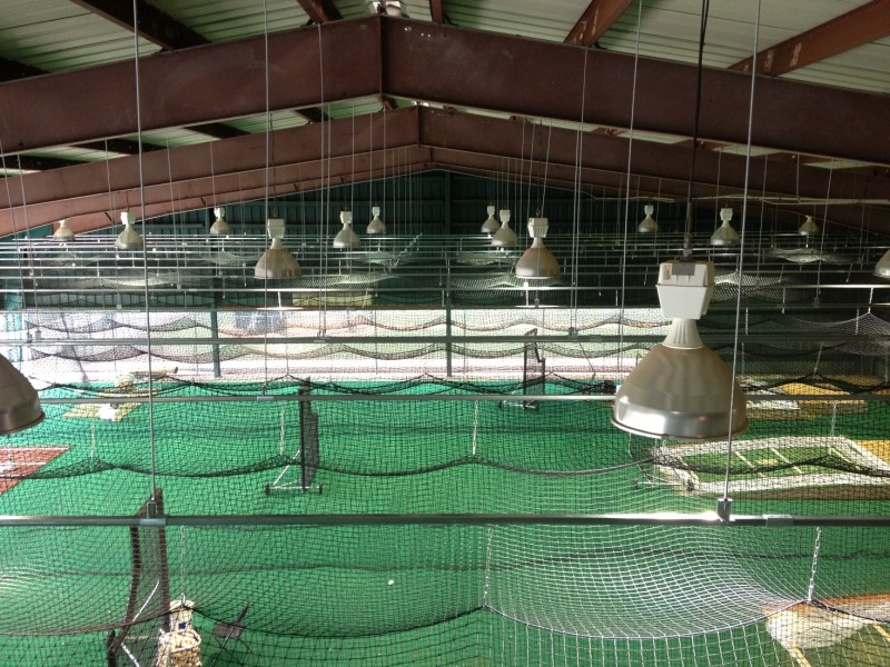 PROJECT DETAILS: Installation Of Retractable Batting Cages And Nets.
